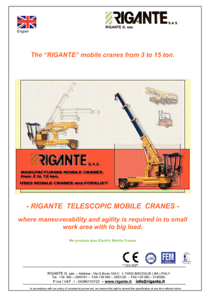 Промышленные автокраны Rigante GR 100